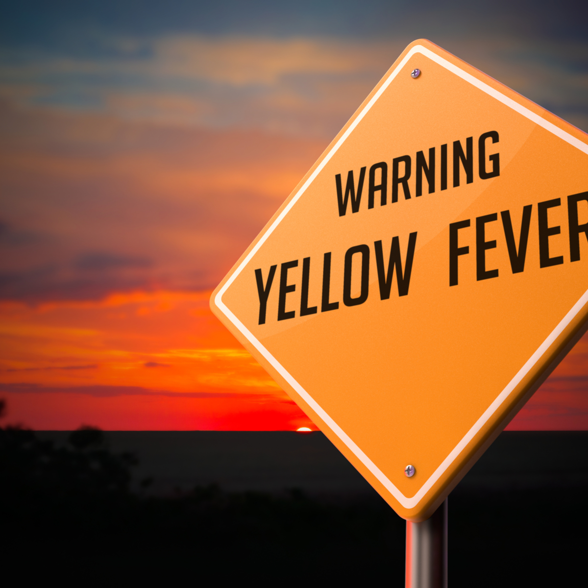 yellow-fever-vaccination